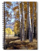 Autumn Chama New Mexico Spiral Notebook