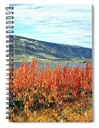 Autumn Cherry Orchard Spiral Notebook