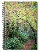 Autumn Colors In The Forest Spiral Notebook
