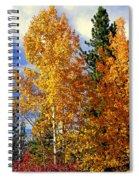 Autumn Colors Spiral Notebook