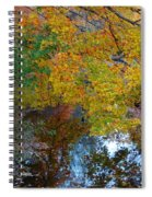 Autumn Colors Of Reflection Spiral Notebook
