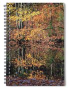 Autumn Colors Reflect Spiral Notebook