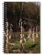 Autumn Cornstalks Spiral Notebook