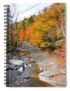 Autumn Creek 3 Spiral Notebook
