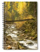 Autumn Crossing Spiral Notebook