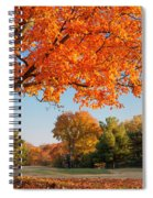 Autumn Dawn Spiral Notebook