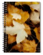 Autumn Dew Spiral Notebook