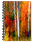 Autumn Dreams Spiral Notebook