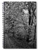 Autumn Drive Bnw Spiral Notebook