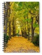 Autumn Entrance 2 Spiral Notebook
