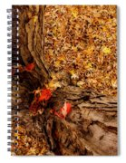 Autumn Fall  Dream Spiral Notebook