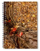 Autumn Fall Spiral Notebook