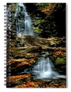 Autumn Falls - 2885 Spiral Notebook