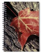 Autumn Find Spiral Notebook