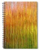 Autumn Fire Abstract Spiral Notebook