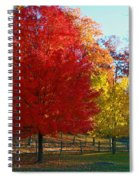 Autumn Fire  In  Red  And  Gold Spiral Notebook