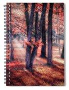 Autumn Firelight Spiral Notebook