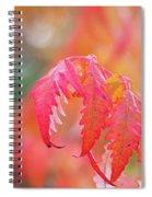 Autumn Fires Spiral Notebook