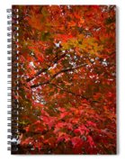 Autumn Foliage-1 Spiral Notebook