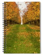 Autumn Foliage Spiral Notebook