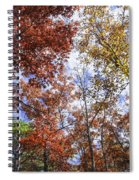 Autumn Forest Canopy Spiral Notebook