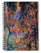Autumn Forest Spiral Notebook