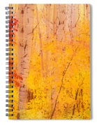 Autumn Forest Wbirch Trees Canada Spiral Notebook
