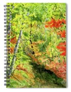 Autumn Fun Spiral Notebook
