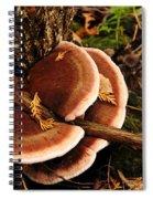 Autumn Fungi Spiral Notebook