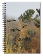 Autumn Geese Spiral Notebook
