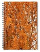 Autumn Gold Spiral Notebook