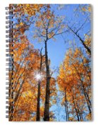 Autumn Gold Sunburst Spiral Notebook