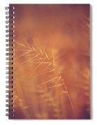 Autumn Grass Spiral Notebook