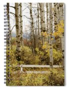 Autumn Grove Spiral Notebook
