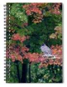 Autumn Hawk Square Spiral Notebook