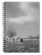 Autumn Hay Bw Spiral Notebook