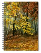 Autumn Hollow II Spiral Notebook