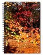 Autumn Hues Spiral Notebook