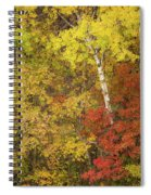 Autumn Impressions Spiral Notebook