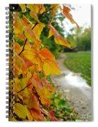 Autumn In Ellenberger Spiral Notebook