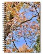 Autumn In Full Swing Spiral Notebook