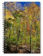 Autumn In Schooley's Mountain Park 2 Spiral Notebook