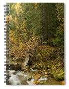 Autumn In The St Joe Spiral Notebook