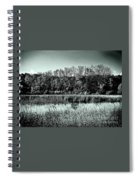 Autumn In The Wetlands - Black And White Spiral Notebook