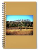 Autumn In The Wetlands Spiral Notebook