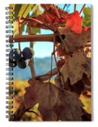 Autumn In The Wine Country Spiral Notebook