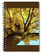 Autumn Is My Favourite Colour Spiral Notebook