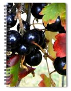 Autumn Jostaberries Spiral Notebook