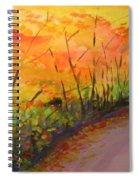 Autumn Lane IIi Spiral Notebook