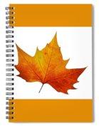 Autumn Leaf 1 Spiral Notebook